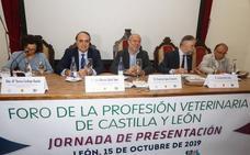León marca el nacimiento de un hito para la profesión veterinaria