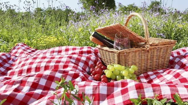 Parques para hacer un picnic
