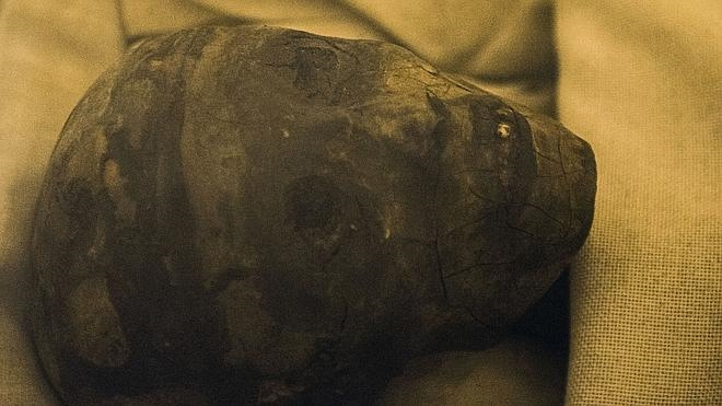 Guerra de arqueólogos por Tutankamón