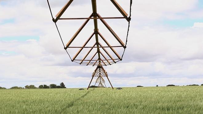 BQ quiere transformar la agricultura con tecnología