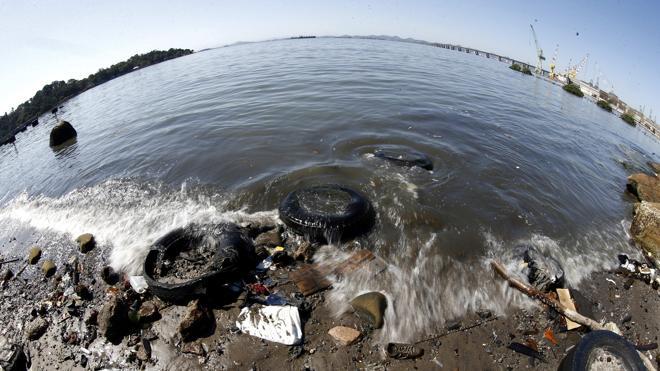 Cadáveres, excrementos, basura: bienvenidos a las competiciones olímpicas de vela