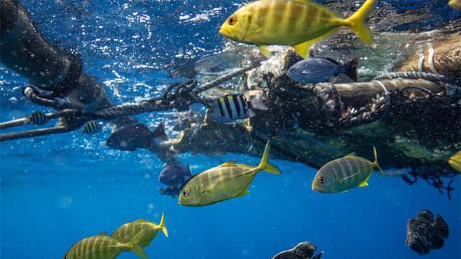 Greenpeace alerta del aumento de vertido de plásticos al mar
