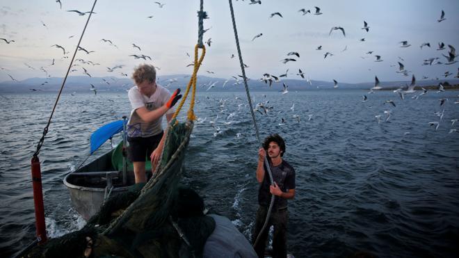 Los países en desarrollo podrían quedarse sin pescado en 2050