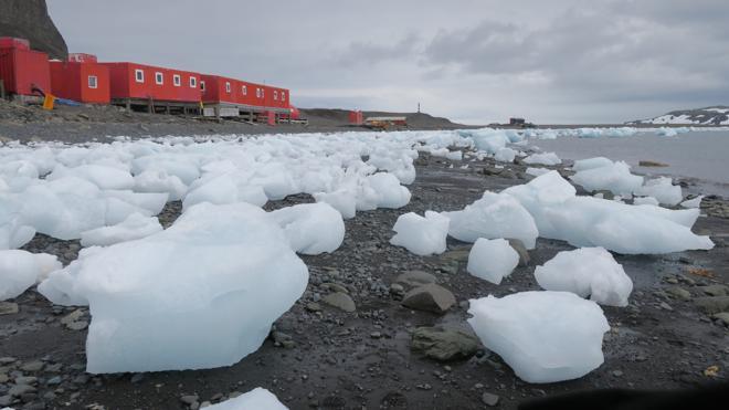 La Antártida, una gigante alerta blanca frente al cambio climático