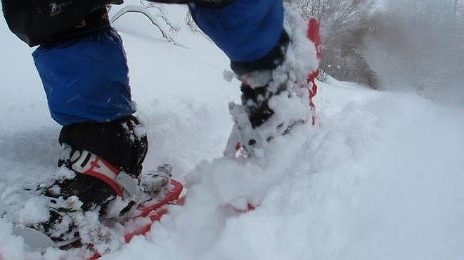 Los antojos de la nieve