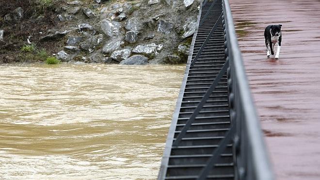 La ausencia de precipitaciones normaliza la situación de los ríos en la provincia