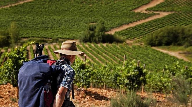 Autóctona del Bierzo presenta la web 'Camino Gourmet' para servir de guía de alojamiento y gastronómica al peregrino