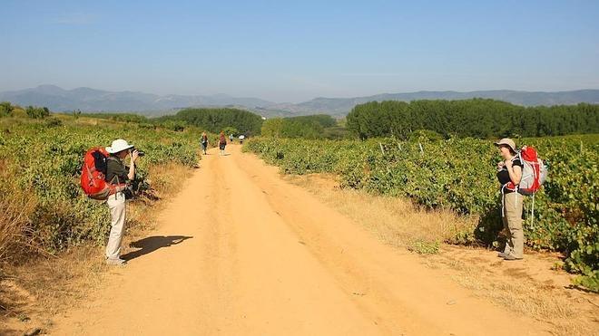 La Diputación de León llevará a cabo un estudio exhaustivo sobre las necesidades de cada kilómetro del Camino de Santiago