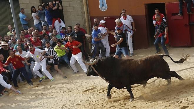 Tres heridos por asta y otro con un neumotórax en el Toro Enmaromado de Benavente