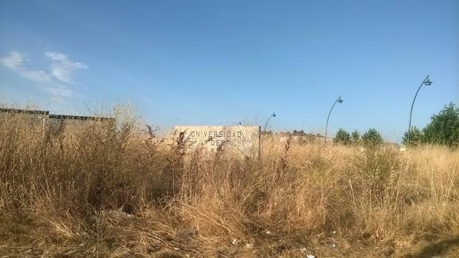C´s denuncia la pasividad del Ayuntamiento en la limpieza de solares y parcelas en León