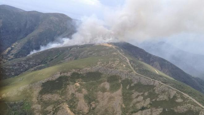 «Terrorismo ecológico», en el incendio de Palacios del Sil