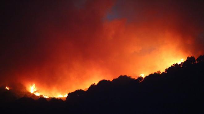El fuego calcina un total de 24 hectáreas en Portela
